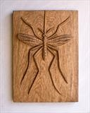 Banded Gnat by Jeremy Turner, Wood, carved wood relief